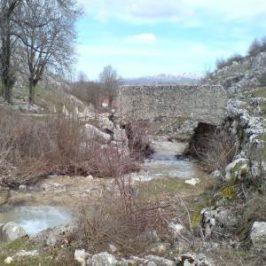 FOTO i VIDEO: Seoski potok