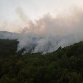 FOTO i VIDEO: Požar na Vagnju, ugrožena i Kamešnica