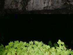 Kamešnica - Šimića pećina