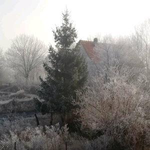 FOTO: Idilično zimsko jutro u Podgradini